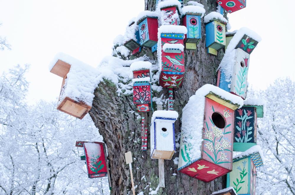 Рынок аренды зимой: чего стоит ждать?