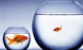 Эконом, комфорт, бизнес и люкс: цена зависит от качества