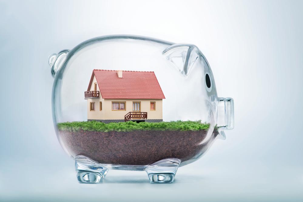 В какой котлован выгоднее инвестировать?