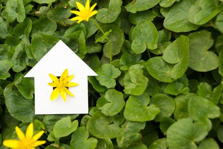 Владельцы частных домов смогут торговать «зеленой» электроэнергией