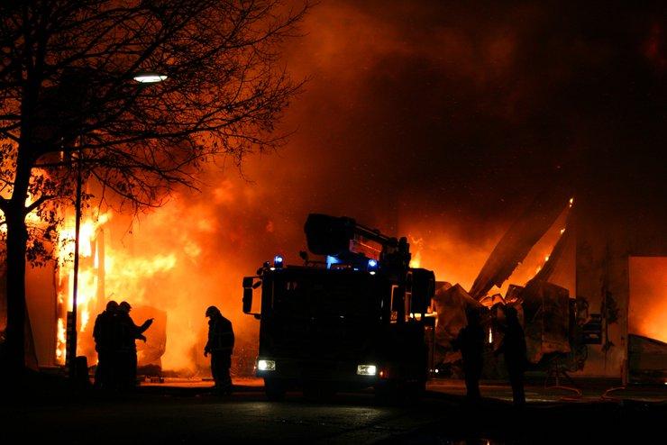 Причиной пожара в парке «Лосиный остров» мог стать поджог