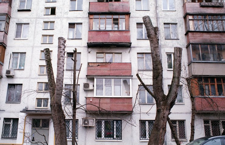 Голые стволы Москвы