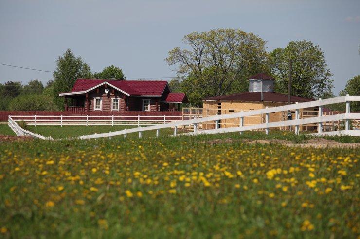 В Подмосковье спрос на летнюю загородную аренду снизился на четверть