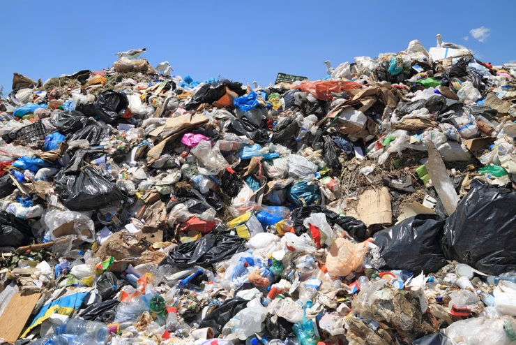 Стройку мусорного полигона на станции Шиес заморозят