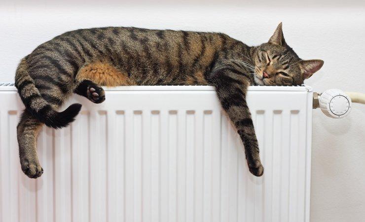 Роспотребнадзор порекомендовал оптимальную температуру в квартире