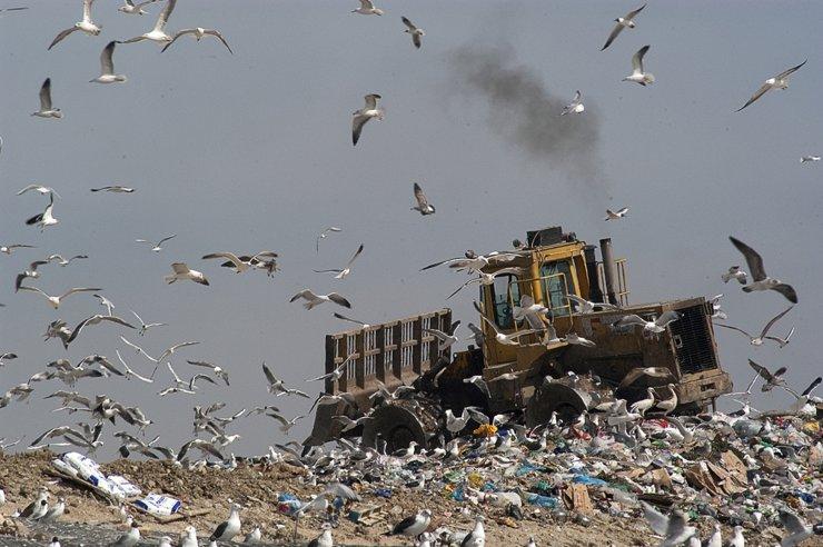 Чем опасна идея приравнять сжигание мусора к его переработке?