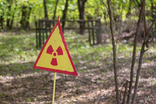 «Гринпис России» подаст в суд на власти Москвы из-за стройки на месте радиоактивного могильника