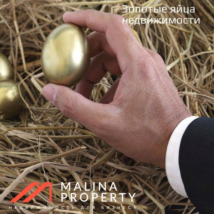 Зачем собственнику продавать помещение которое сдано в аренду и приносит доход?