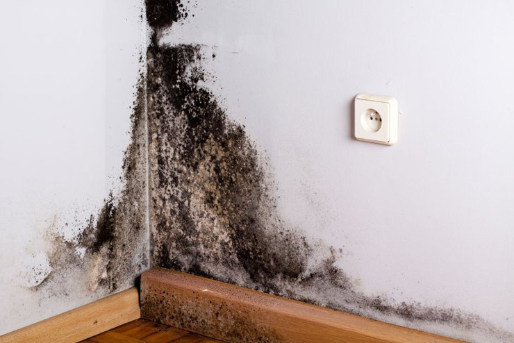 Жильцы реновационной новостройки опасаются за состояние дома