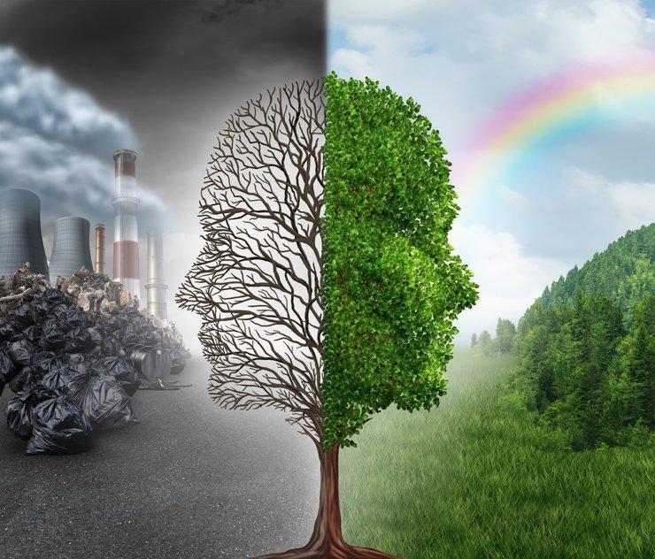 Большинство жителей городов-миллионников обеспокоены вопросами экологии и безопасности