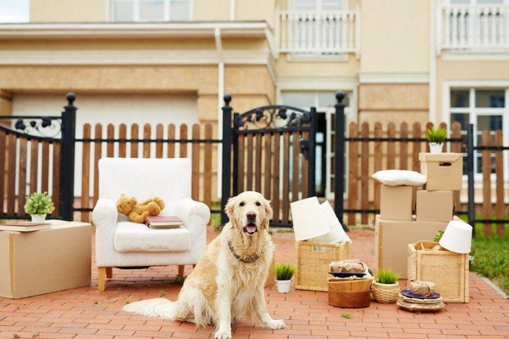 Владельцы отказывают каждому второму арендатору