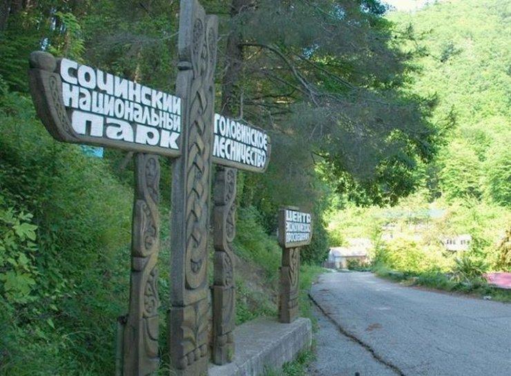 WWF требует признать самостроем дорогу в нацпарке в Сочи