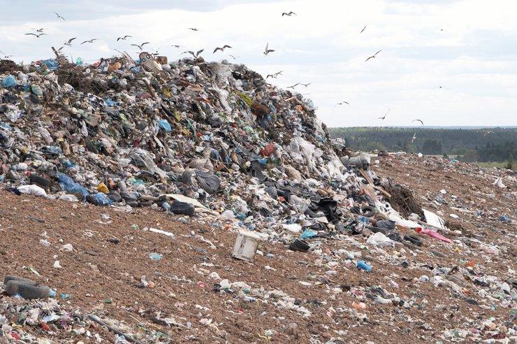 В Минприроды назвали число мусорных полигонов, нуждающихся в рекультивации