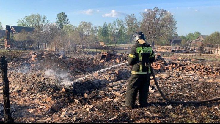 Под Великим Новгородом пожар уничтожил 20 дачных и жилых домов