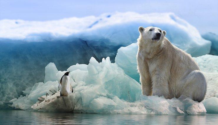 «Дальневосточный гектар» расширят на Арктику