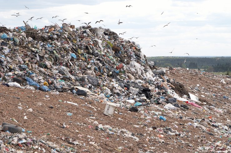 В России построят пять мусоросжигающих заводов