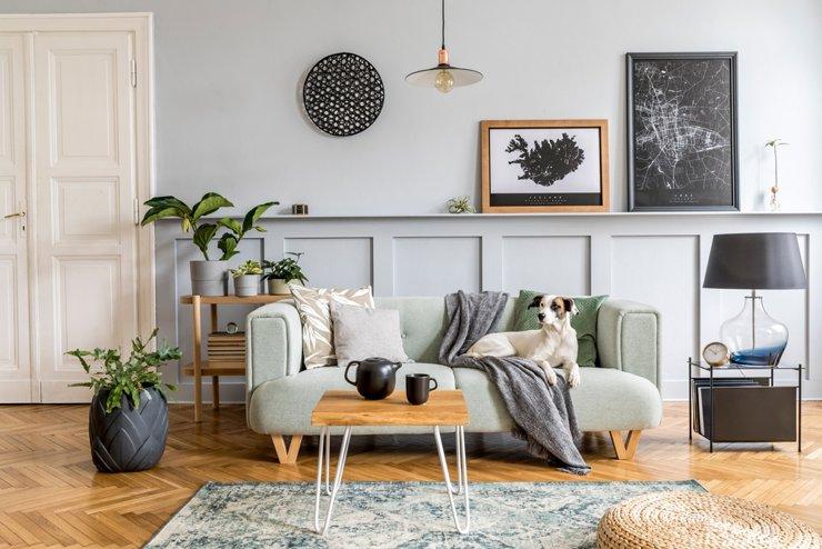 Пять приемов, как сделать квартиру более инстаграмной