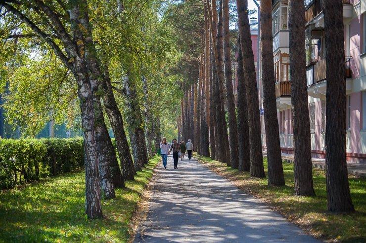 В Новосибирске цены на жилье в Академгородке выросли на 52%