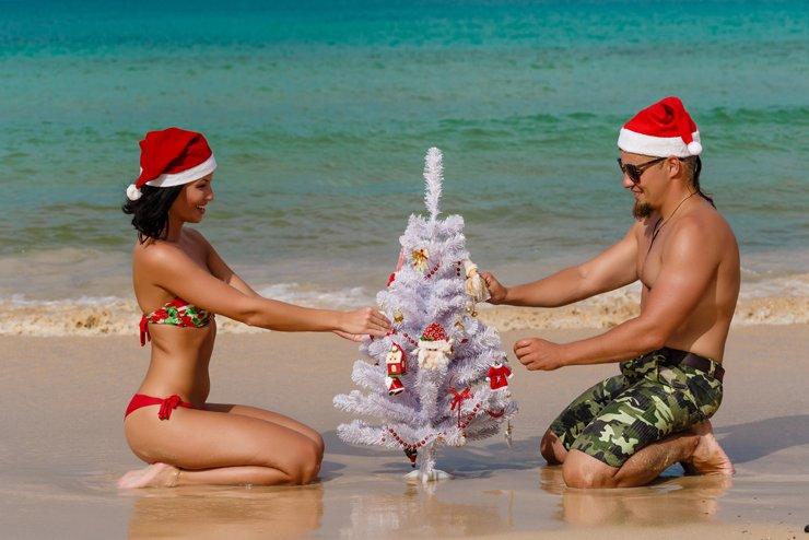 Аренда на Новый год: Щербинка или Женева или...?