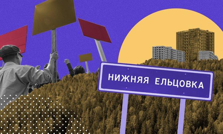 «ДОМ» в лесу: новый виток в конфликте из-за планов застройки Нижней Ельцовки
