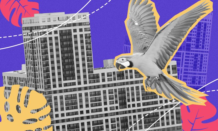 ЖК «Рио»: дома будут точно, а паркинг— под вопросом